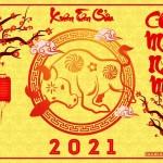 Hình ảnh tết 2021
